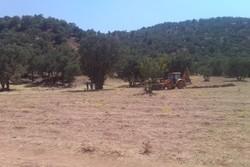۷۸ هزار متر مربع از اراضی منطقه «سفید کوه» از چنگال سودجویان خارج شد