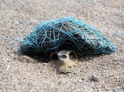 تا سال ۲۰۵۰، دریاها بیشتر حاوی پلاستیک خواهند بود تا ماهی