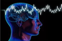 استفاده از نقشه برداری مغز برای درک سیستم عصبی