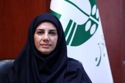 معصومه حسینپور مدیرکلدفتر حقوقی و امور مجلس سازمان محیط زیست شد