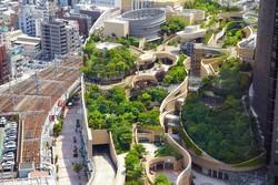 پشت بام های گلخانه ای در مناطق شهری جهان