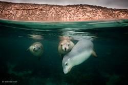 مسابقه عکاسی جغرافیای طبیعی استرالیا