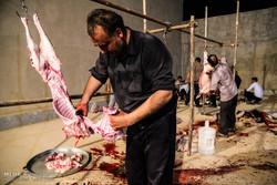 بازرسی بهداشتی و شرعی حدود ۵ هزار لاشه و دام قربانی در همدان