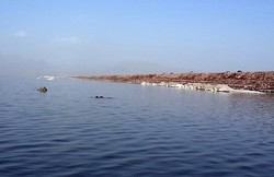 Lake Urmia water level increases by 7cm