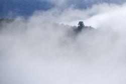 اطلالة رائعة من أعلى إرتفاعات سهول مازندران/ صور