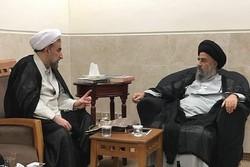 رئیس دانشگاه مذاهب اسلامی با آیت الله مدرسی دیدار کرد