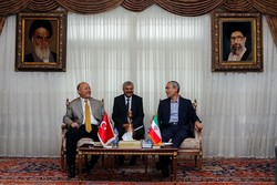 Turkey's Erzurum calls for increased medical coop. with Iran's Tabriz