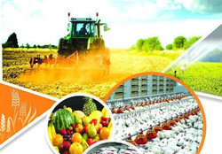 Agriculture projects