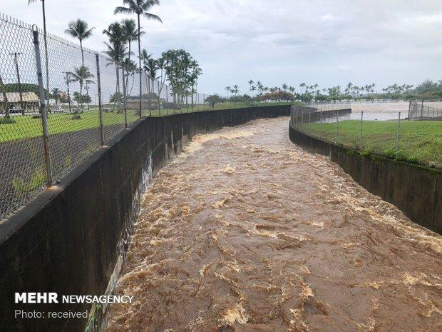 طوفان لین در هاوایی