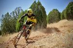 نفرات برتر مرحله دوم دوچرخه سواری لیگ کوهستان معرفی شدند
