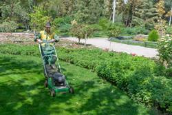 اختصاص بودجه به توسعه فضای سبز کرج/لزوم حمایت از صنعت گلوگیاه