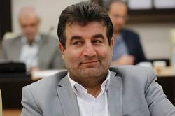 الگوهای اقتصادی غربی نسخه شفابخشی برای ایران ندارد