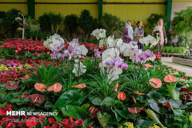 سومین نمایشگاه گل و گیاه در خرمآباد برپا میشود