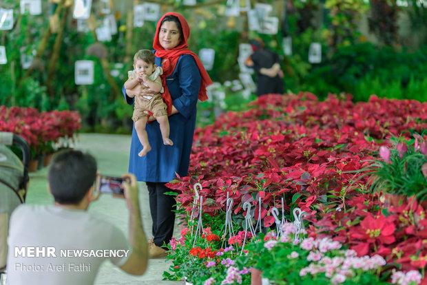 ششمین نمایشگاه گل و گیاه کرج