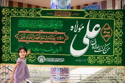 حضرت علی (ع) کے حرم مبارک کے پرچم کا استقبال