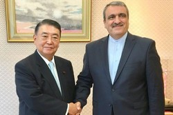 Japan Parl. speaker calls for broadening Tehran-Tokyo ties
