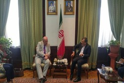 Iran's Jaberi Ansari discusses Idlib with UK envoy