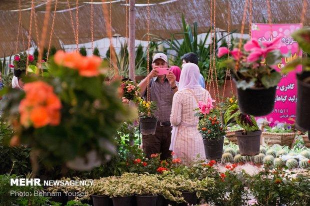 Flower festival in Markazi province