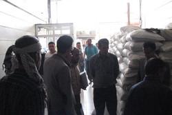 ۱۰ تن کود شیمیایی اوره دولتی خارج از شبکه رسمی کشف و ضبط شد