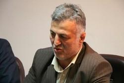 محمدحسین ملاح رئیس هیئت کشتی گلستان شد