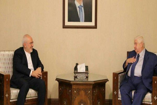 ظريف يؤكد على دعم إيران لسوريا في مكافحة الارهاب