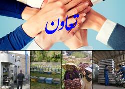 ۲۷۰ تعاونی بانوان در استان زنجان فعال است