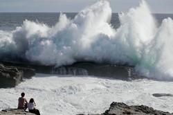 طوفان «جبی» در ژاپن
