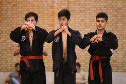 مسابقات کشوری هاپکیدو سبک دوکمو در قزوین
