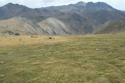 عزم جدی برای حفاظت از کوه شاه وجود دارد/ لزوم برخورد با عاملان تخریب محیط زیست