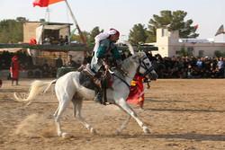 روایت اسبهایی که «ذوالجناح» میشوند/ ارادت اهل سنت به امام حسین