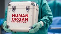 Organ recipients need financial, social assistance, says cardiologist