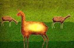 حضور انیمیشن حوزه هنری استان در۳۴ جشنواره بین المللی