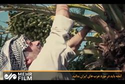 آنچه باید در مورد عربهای ایران بدانید