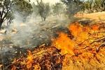 ارتفاعات جنگلی درازنو دچار آتش سوزی شد