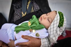 همایش شیرخوارگان حسینی در استانها - ۲