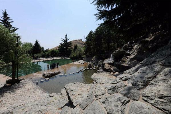 ۱۷۰ هزار متر مربع از اراضی بوستان جمشیدیه از دست جاعلان رها شد