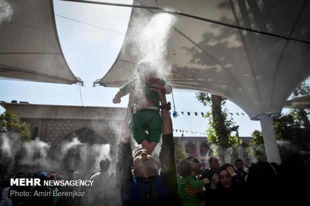 همایش شیرخوارگان حسینی در شیراز