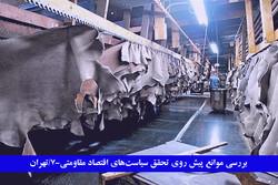 خسارت واردات چرم به صنعتگر داخلی/تولیدکننده ها: واردات ممنوع شود