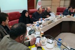 همراهی بانکها در پرداخت تسهیلات تولید در استان قزوین بیشتر شود