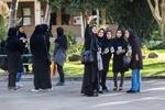 دانشگاههای تک جنسیتی از ادغام و الحاق مصون شدند/ یک استثنا در طرح ساماندهی