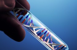 Welfare Organization to cover costs of genetic testing