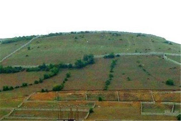رفع تصرف ۲۳۰۰ متر از اراضی ملی در هرسین