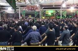 مراسم سینهزنی سنتی در بوشهر