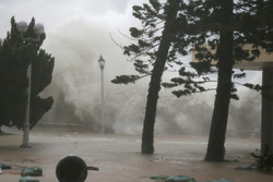 جاپان میں سمندری طوفان، 4 افراد ہلاک، 120 زخمی