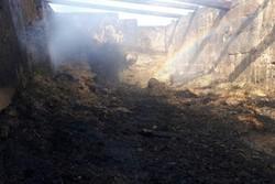 آتشسوزی در یک انبار کاه در شهرستان پلدختر
