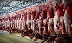 توقف محموله گوشت وارداتی تکذیب شد/افزایش ۲۶درصدی واردات گوشت قرمز