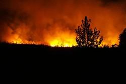 آتشسوزی گسترده در جنگلها و مراتع حاشیه تالابهای «ولیعصر» پلدختر