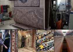 صادرات ۱۲۳میلیون دلار فرش ماشینی از کاشان به خارج از کشور