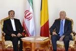 Romania backs JCPOA wholeheartedly: Romanian FM