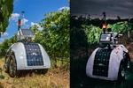 تولید ربات کشاورز برای مراقبت و برداشت محصول